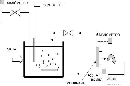 Global Biorreactores Market