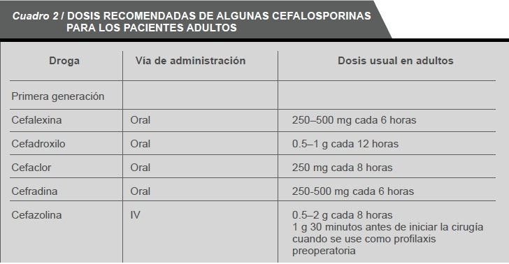 Global Cefalosporina Market