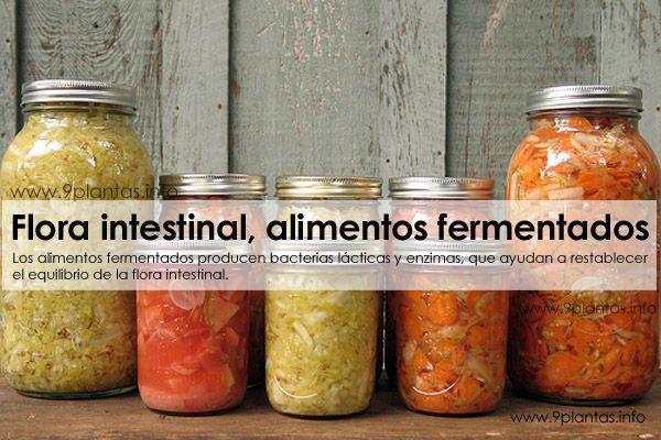 Global Comidas fermentadas Market