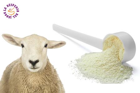 Global Leche de oveja en polvo Market