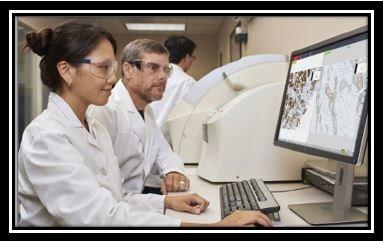 Global Servicio de telepatologia Mercado Insights Reporte 2020-2026 con análisis del efecto Coronavirus (COVID-19) : Apollo TeleHealth Services, Diagnostic Instruments Inc, eVisit Telemedicine Solution