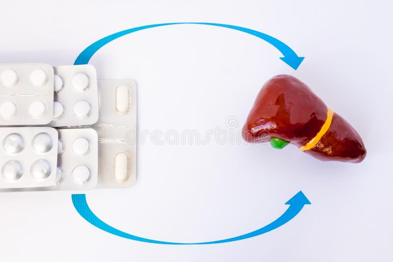 Global Terapia de reemplazo de enzimas Market
