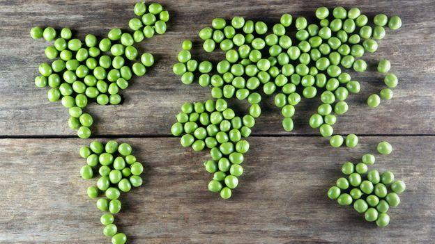 El auge del veganismo impulsa el crecimiento en el mercado de 3 ingredientes omega sin pescado